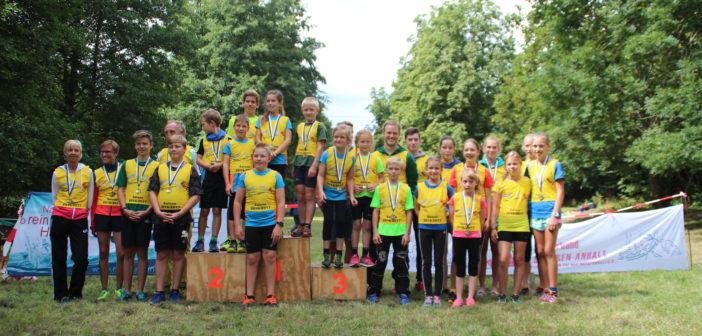 Bergmeisterschaft in Wernigerode bildet Auftakt zur Tour de Harz